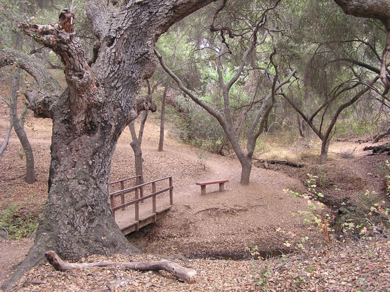 oak creek chat sites Manzanita campground is a small, year-round, tent-only facility with campsites that fill up very quickly visitors enjoy the campground for its fishing and swimming holes along oak creek.